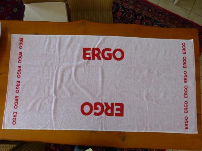 Ergo-2